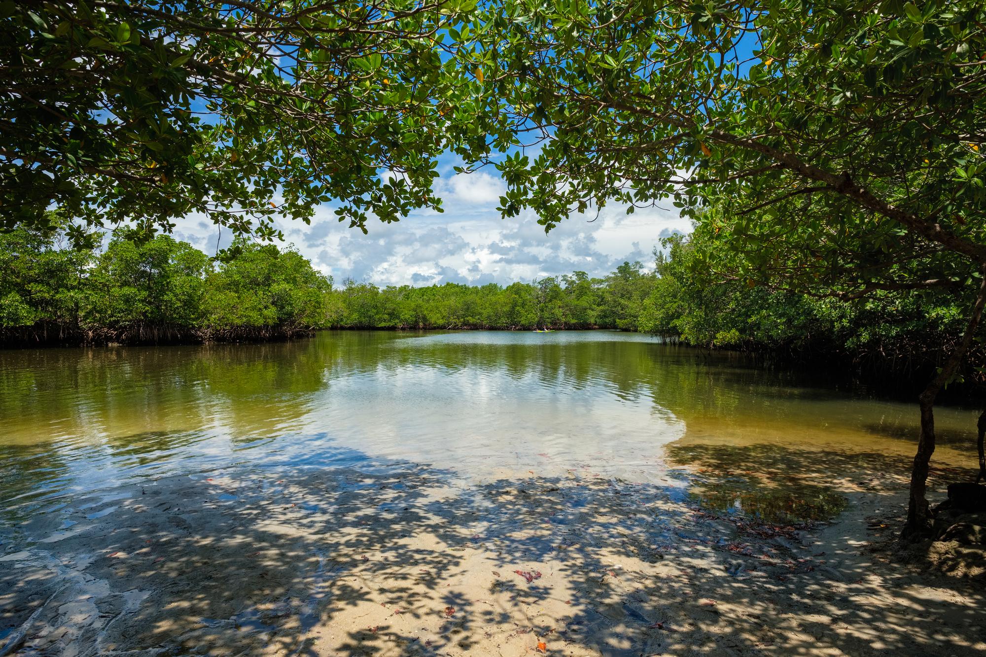 best hikes in Miami - Oleta River State Park
