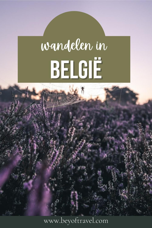 Wandelen in België
