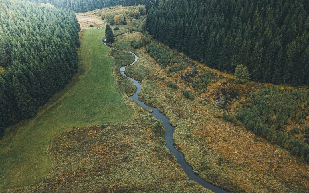 De 20 mooiste wandelingen in de Ardennen
